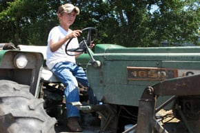 Youth in Agriculture