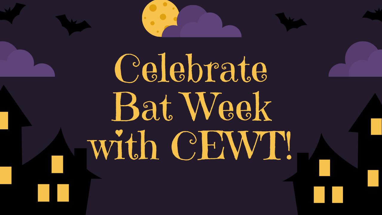 Bat Week!