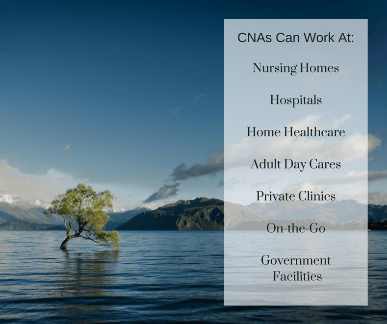 Certified Nursing Assistant copy 2-1.png