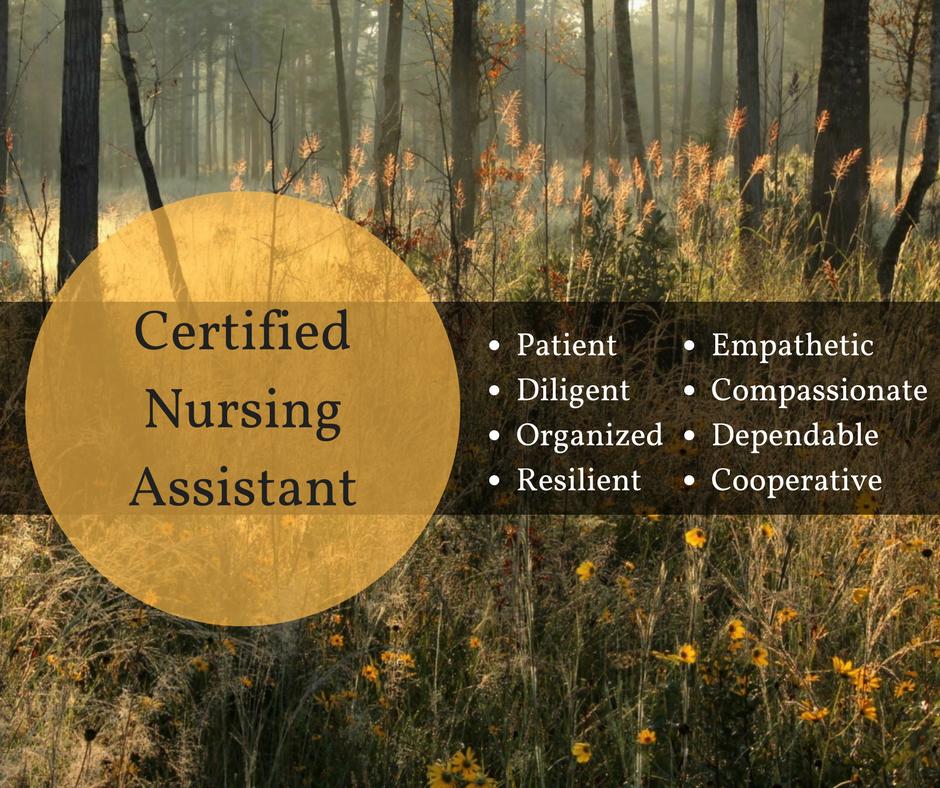 Certified Nursing Assistant copy.png