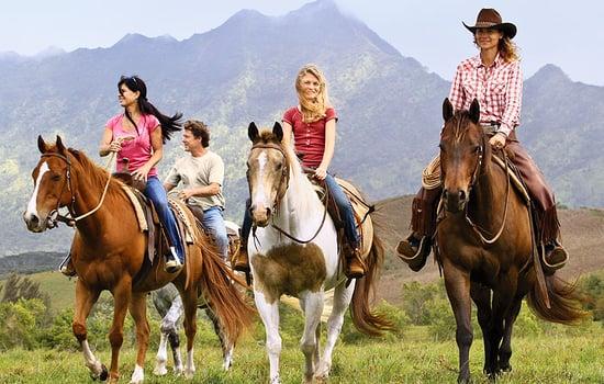 horsemanship classes