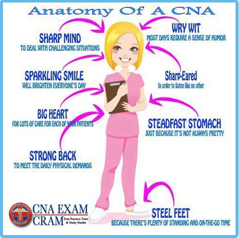 list of cna duties