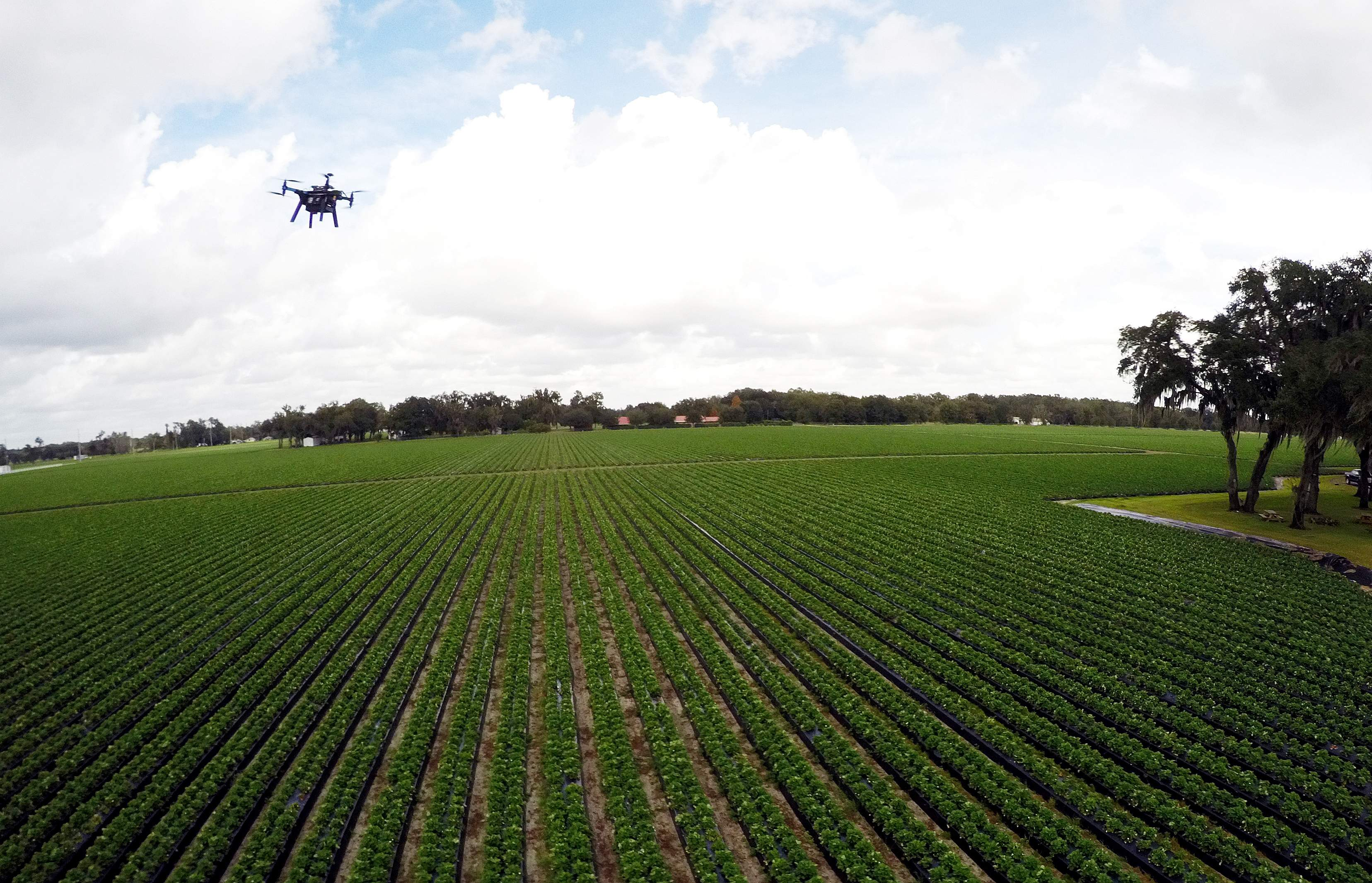 drones 1.jpg